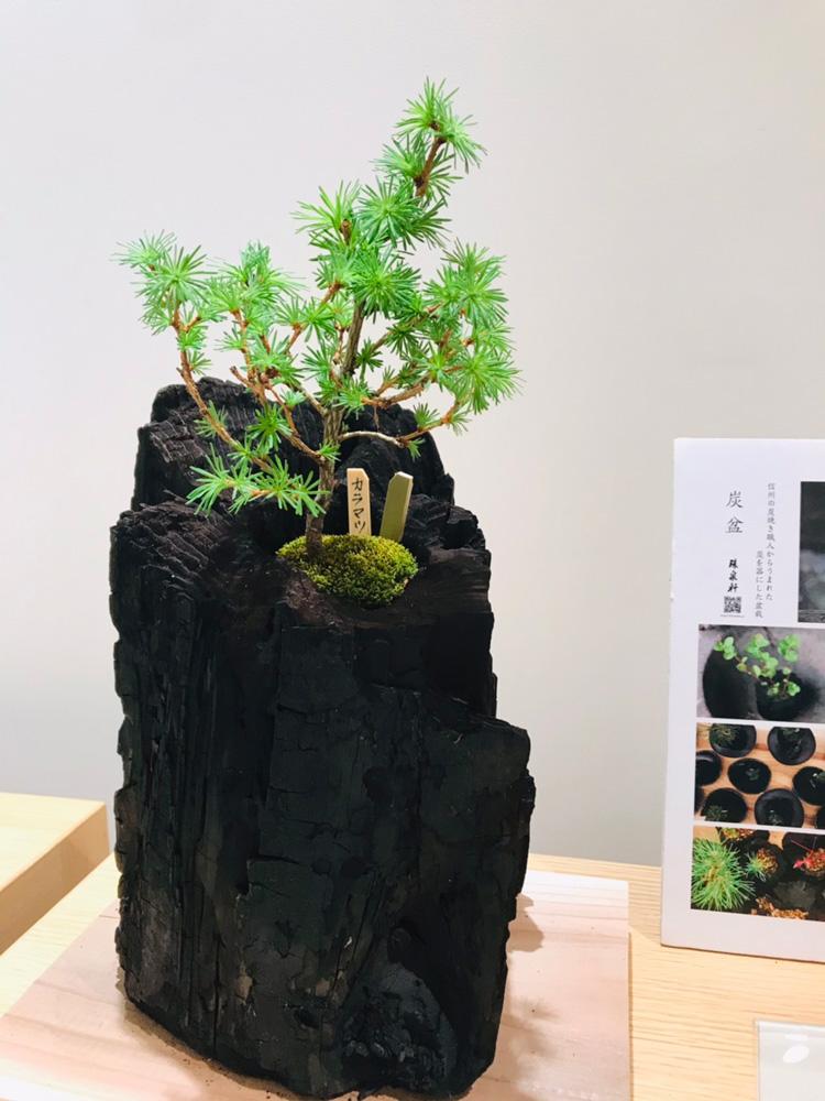 新宿髙島屋10階 和食器にて炭盆展示中です